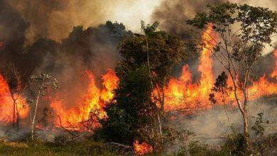 صورة 5 حرائق في 5 أيام بريف مصياف