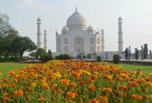 صورة مع آلاف الوفيات يومياً ..إعادة فتح مزار تاج محل الهندي الشهير