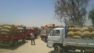 صورة السرقة مستمرة.. الاحتلال الأمريكي يخرج شاحنات محملة بالقمح السوري إلى العراق