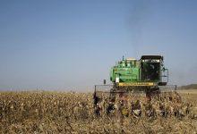 صورة وزير الزراعة الجزائري: رفضنا شحنة قمح فرنسي بعد العثور على حيوانين نافقين