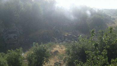 صورة حريق يطال حوالي ١٥ دونم من البلوط والسنديان في قنوات