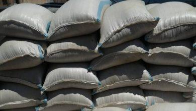 صورة حماية المستهلك بحماة تضبط 37 طناً من القمح معدة للمتاجرة غير المشروعة