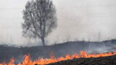 صورة حريق آخر بجبال اللقبة وبفعل فاعل