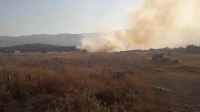 صورة النيران تلتهم 8 دونمات من كروم التين والزيتون بريف مصياف