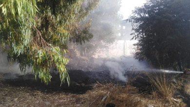 صورة إخماد 4 حرائق في اللاذقية