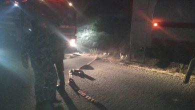 """صورة مدير الدفاع المدني في اللاذقية لـ""""الوطن"""": إخماد حريق كبير في صلنفة"""