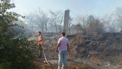صورة إخماد حريق بأشجار مثمرةعلى مساحة 6 دونماتفي ريف حمص الغربي