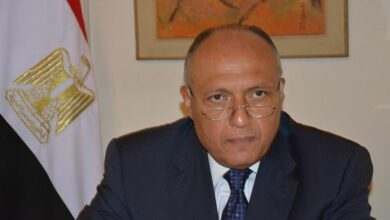 صورة القاهرة تؤكد الدور المحوري لسورية ومصر في حفظ الأمن القومي العربي