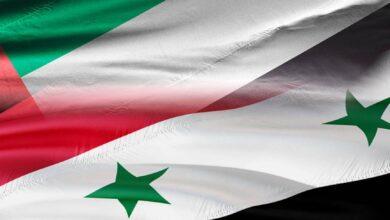 صورة سورية والإمارات تتفقان على خطط لتعزيز التعاون الاقتصادي خلال المرحلة القادمة